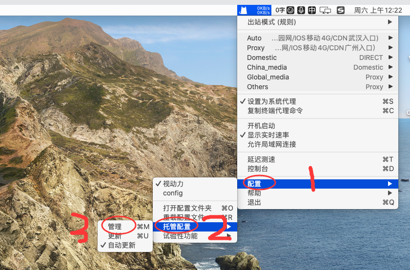 2021最新Clash.for.MAC OS中文汉化版完美配置Clash订阅链接保姆级教程